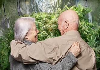 marijuana-parkinson